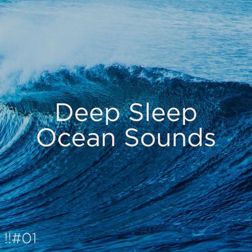 !!#01 Deep Sleep Ocean Sounds by Ocean Sounds (1)