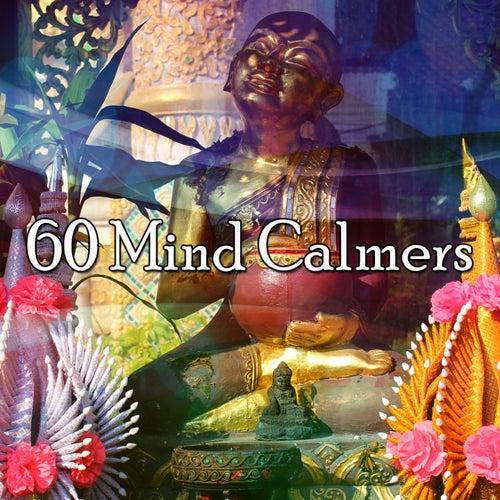 60 Mind Calmers von Massage Therapy Music