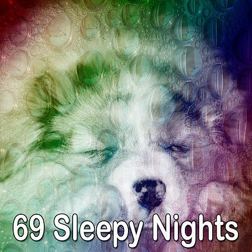 69 Sleepy Nights de Lullaby Land