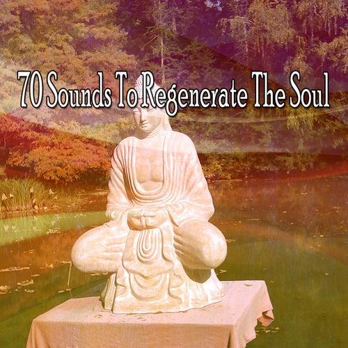 70 Sounds to Regenerate the Soul de White Noise Research (1)