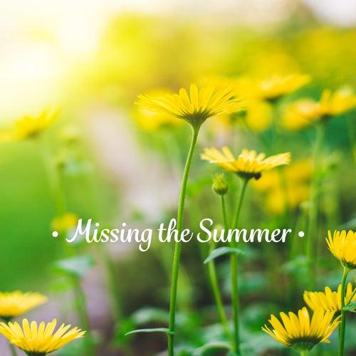 Missing the Summer: Forest Birds Singing, Ocean Waves, Summer Rain de Relaxing Flute Music Zone