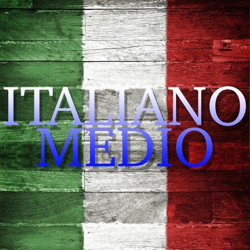 Italiano medio (Il meglio della musica italiana) di Various Artists