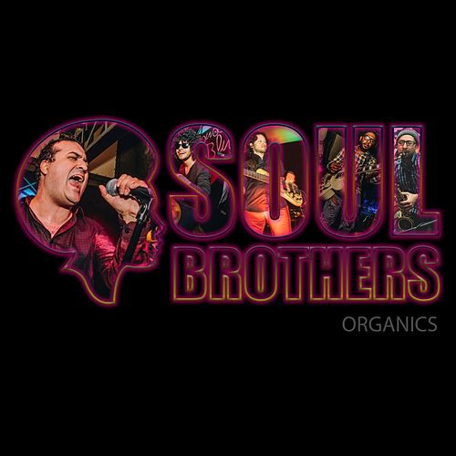 Organics de The Soul Brothers
