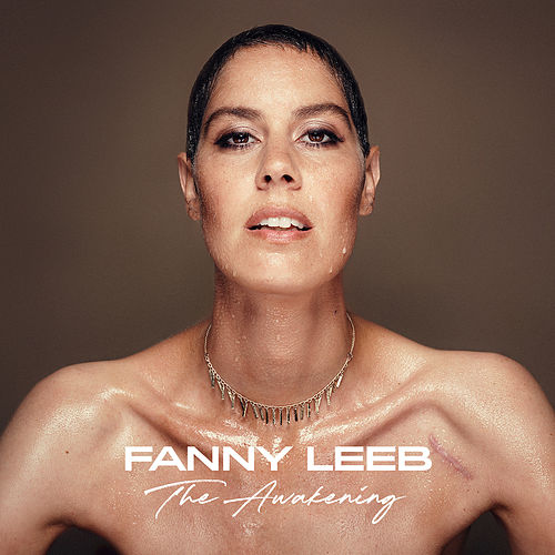 I Can't Do It by Fanny Leeb