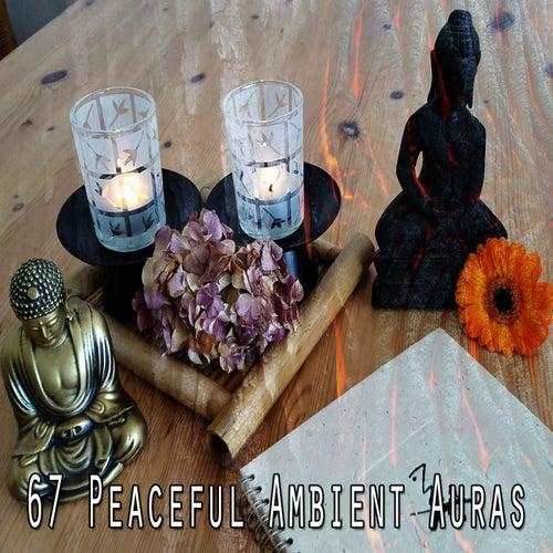 67 Peaceful Ambient Auras de Yoga Tribe