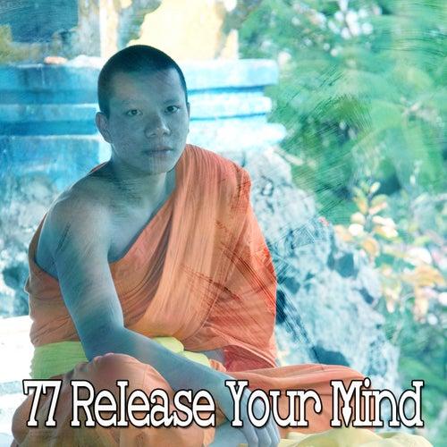 77 Release Your Mind de Zen Meditate