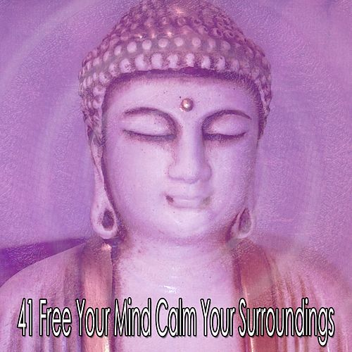 41 Free Your Mind Calm Your Surroundings von Lullabies for Deep Meditation