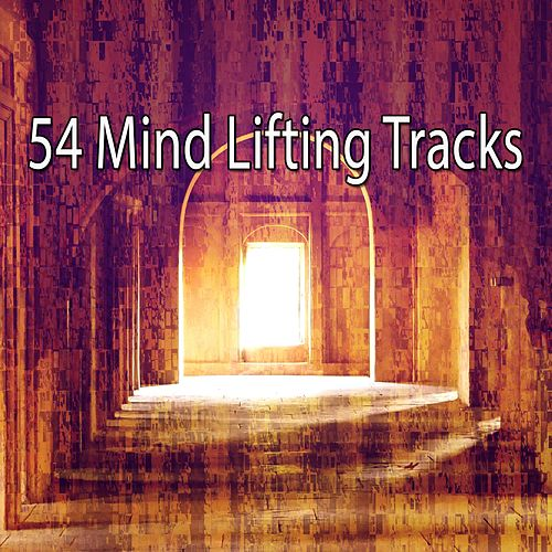 54 Mind Lifting Tracks de Music For Meditation