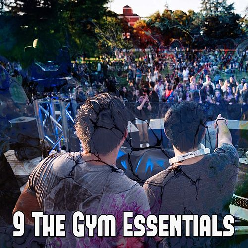 9 The Gym Essentials by Ibiza Dance Party