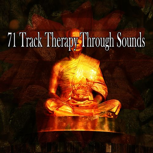 71 Track Therapy Through Sounds von Entspannungsmusik
