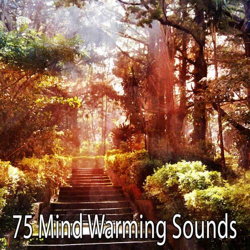 75 Mind Warming Sounds de Meditation Zen Master