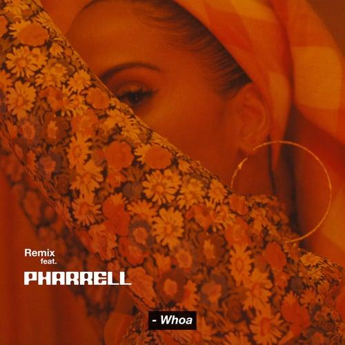 Whoa (Remix) by Snoh Aalegra