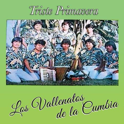 Triste Primavera by Los Vallenatos De La Cumbia