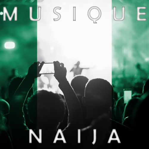 Musique Naija de Various Artists