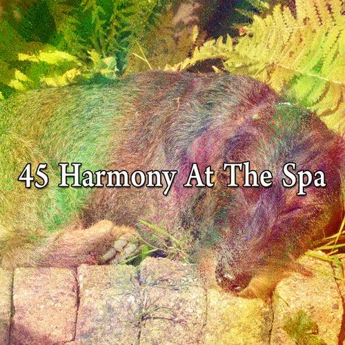 45 Harmony at the Spa de Sleepicious