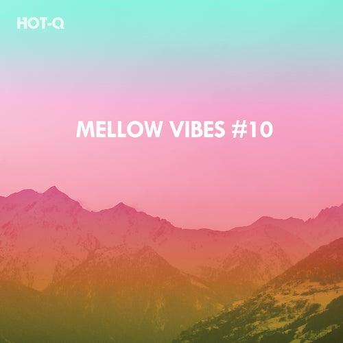Mellow Vibes, Vol. 10 de Hot Q