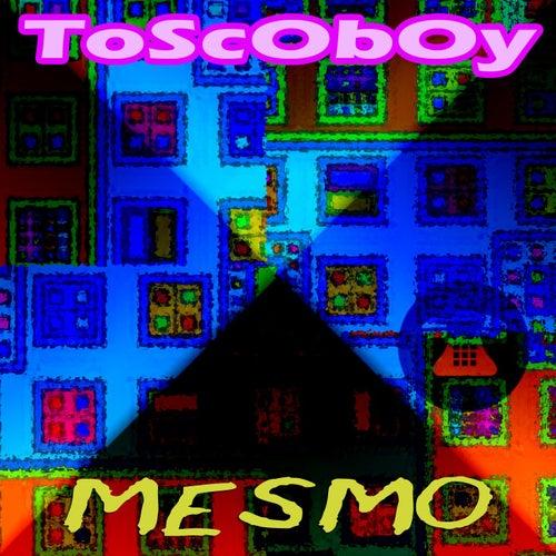 Mesmo de Toscoboy
