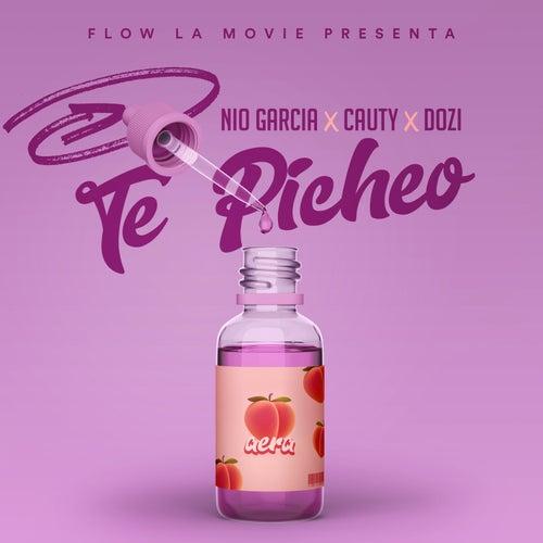 Te Picheo by Nio Garcia