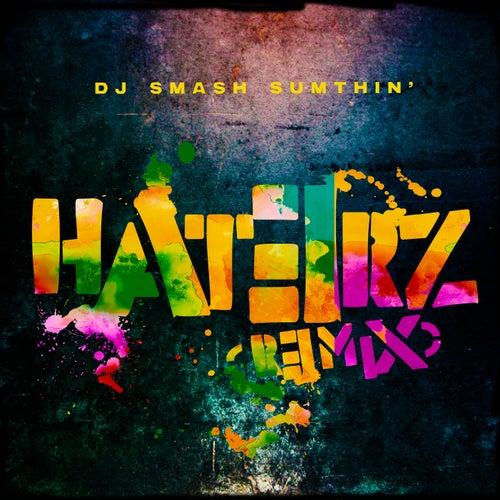Haterz (Remix) by Dj Smash Sumthin