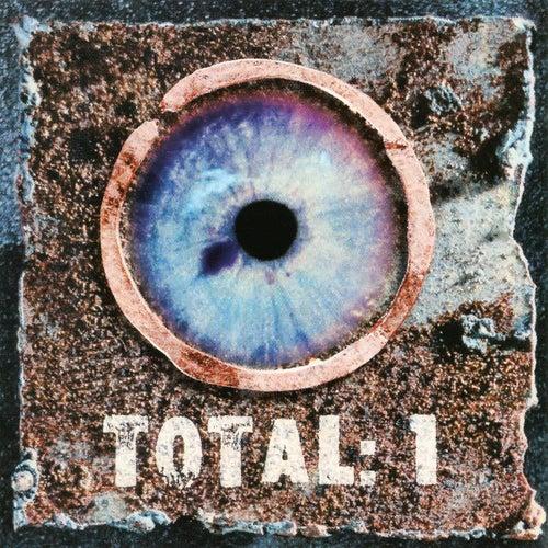 Total: 1 de Total