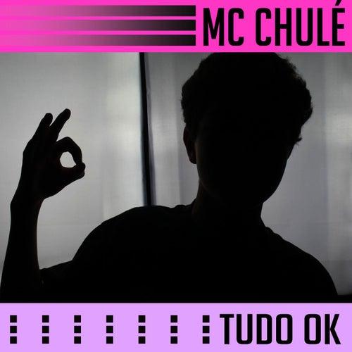 Tudo Ok de MC Chulé