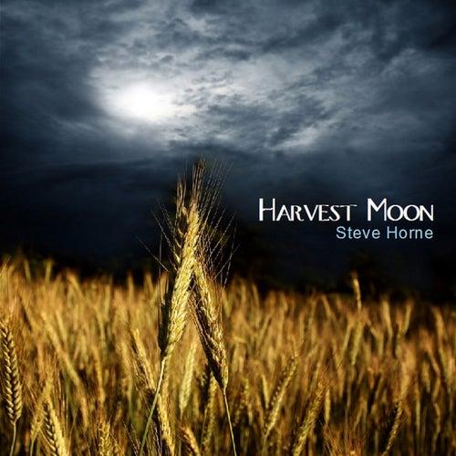 Harvest Moon by Steve Horne