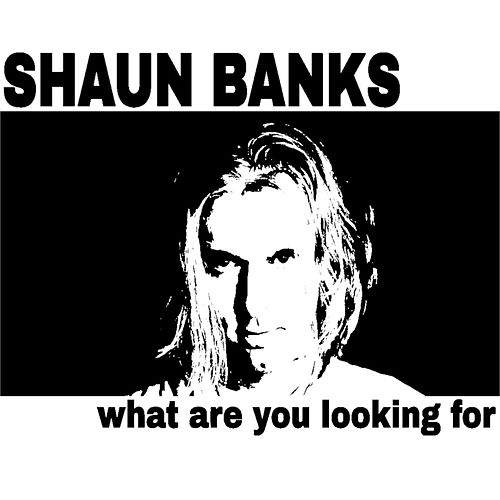 What Are You Looking For by Shaun Banks