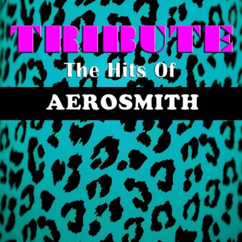 Tribute The Hits Of Aerosmith de Wildlife