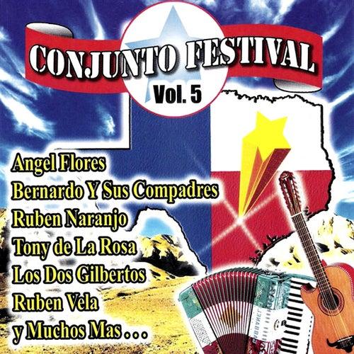 Conjunto Festival Vol. 5 de Various Artists