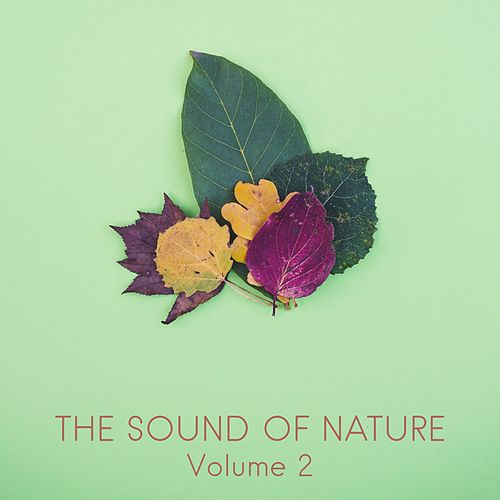 The Sound of Nature, Vol. 2 by Nature Sounds (1)