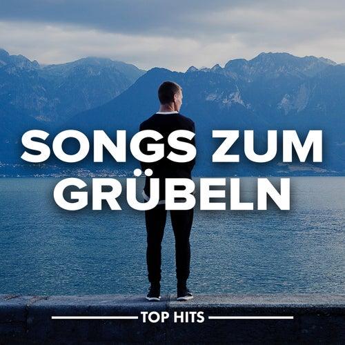 Songs zum Grübeln von Various Artists