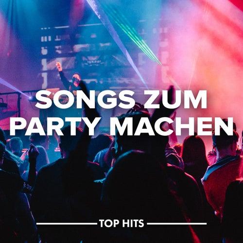 Songs zum Party machen von Various Artists