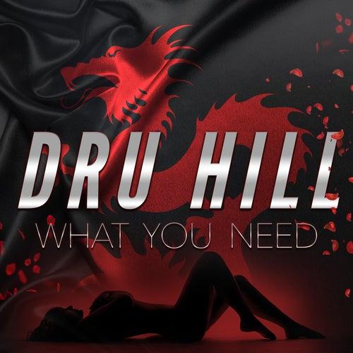 What You Need de Dru Hill