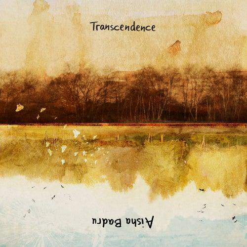 Transcendence by Aisha Badru