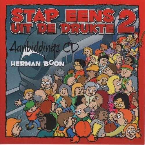 Stap eens uit de drukte 2 by Herman Boon