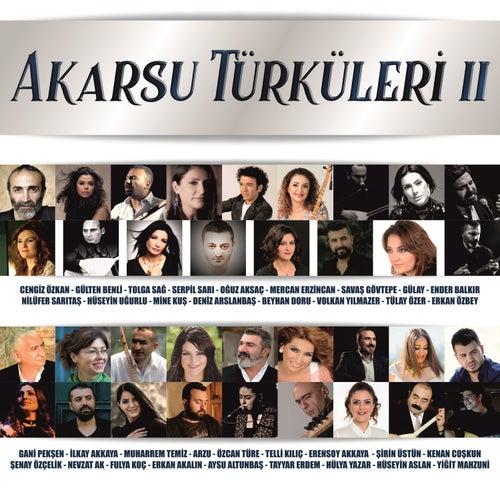 Akarsu Türküleri 2 von Çeşitli Sanatçılar