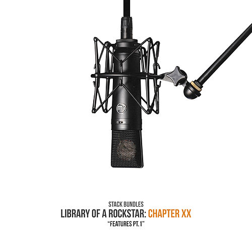 Library of a Rockstar: Chapter 20 - Features, Pt. 1 by Stack Bundles
