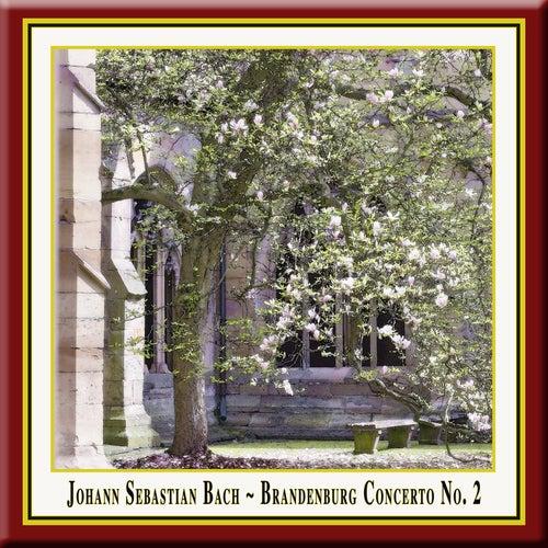 J.S.Bach: Brandenburg Concerto No. 2 / 2. Brandenburgisches Konzert in F-Dur, BWV 1047 by Wolfgang Bauer Consort