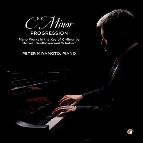 C Minor Progression by Peter Miyamoto