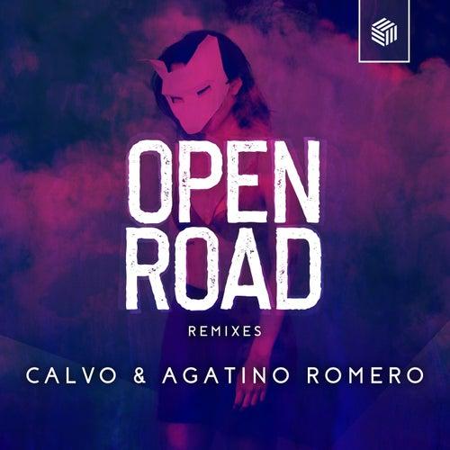 Open Road - The Remixes de Calvo