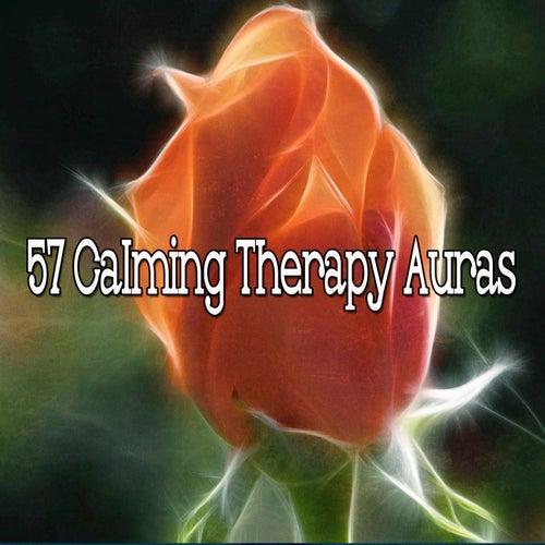 57 Calming Therapy Auras de Meditación Música Ambiente