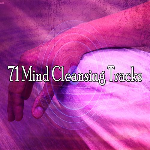 71 Mind Cleansing Tracks von Study Concentration