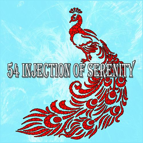 54 Injection of Serenity de Massage Therapy Music