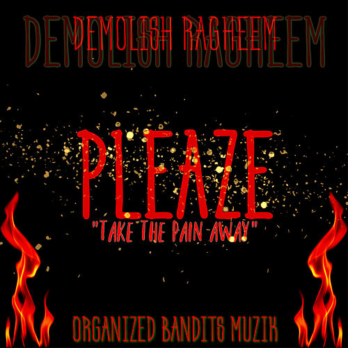 PLEAZE Take The Pain Away von Demolish Ragheem
