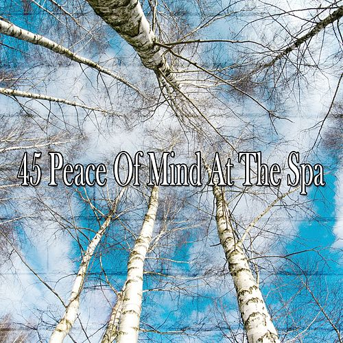 45 Peace of Mind at the Spa by S.P.A