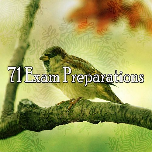 71 Exam Preparations de Zen Meditate