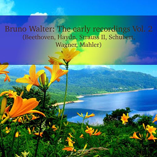 Bruno Walter: The early recordings Vol. 2 (Beethoven, Haydn, Strauss II, Schubert, Wagner, Mahler) de Bruno Walter