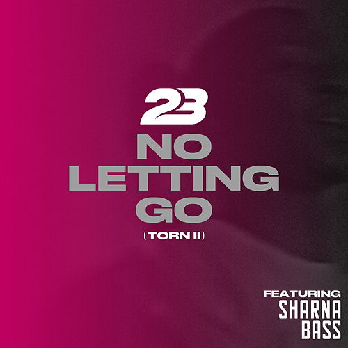 No Letting Go (Torn2) by 23 Unofficial