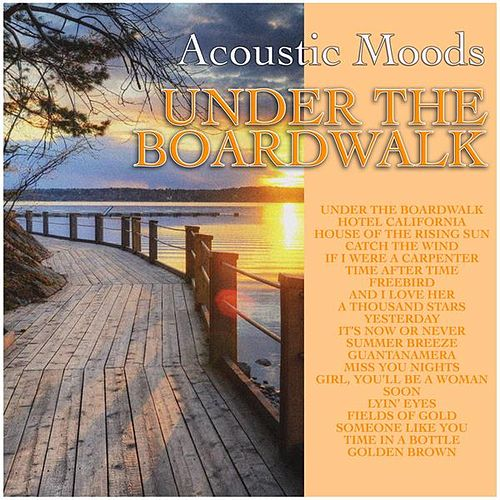 Under the Boardwalk de Acoustic Moods