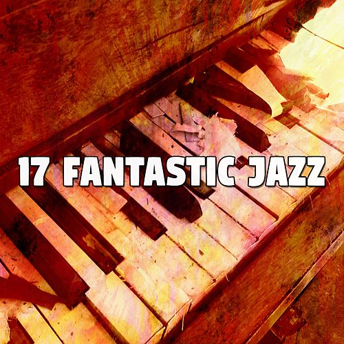 17 Fantastic Jazz von Chillout Lounge